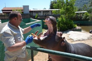 puglia-fasano-zoo-bilingual-kids