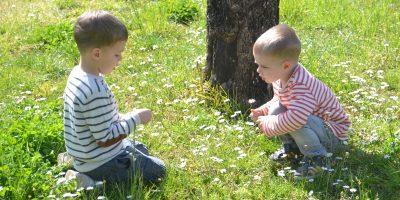 bilingual-kids-cute-funny-things-say-do