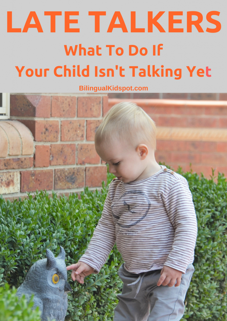 Late Talkers, what to do if your child is not speaking yet
