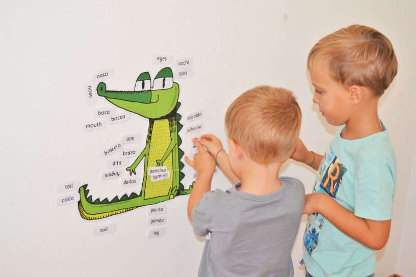 Bilingual-printables-crocobody