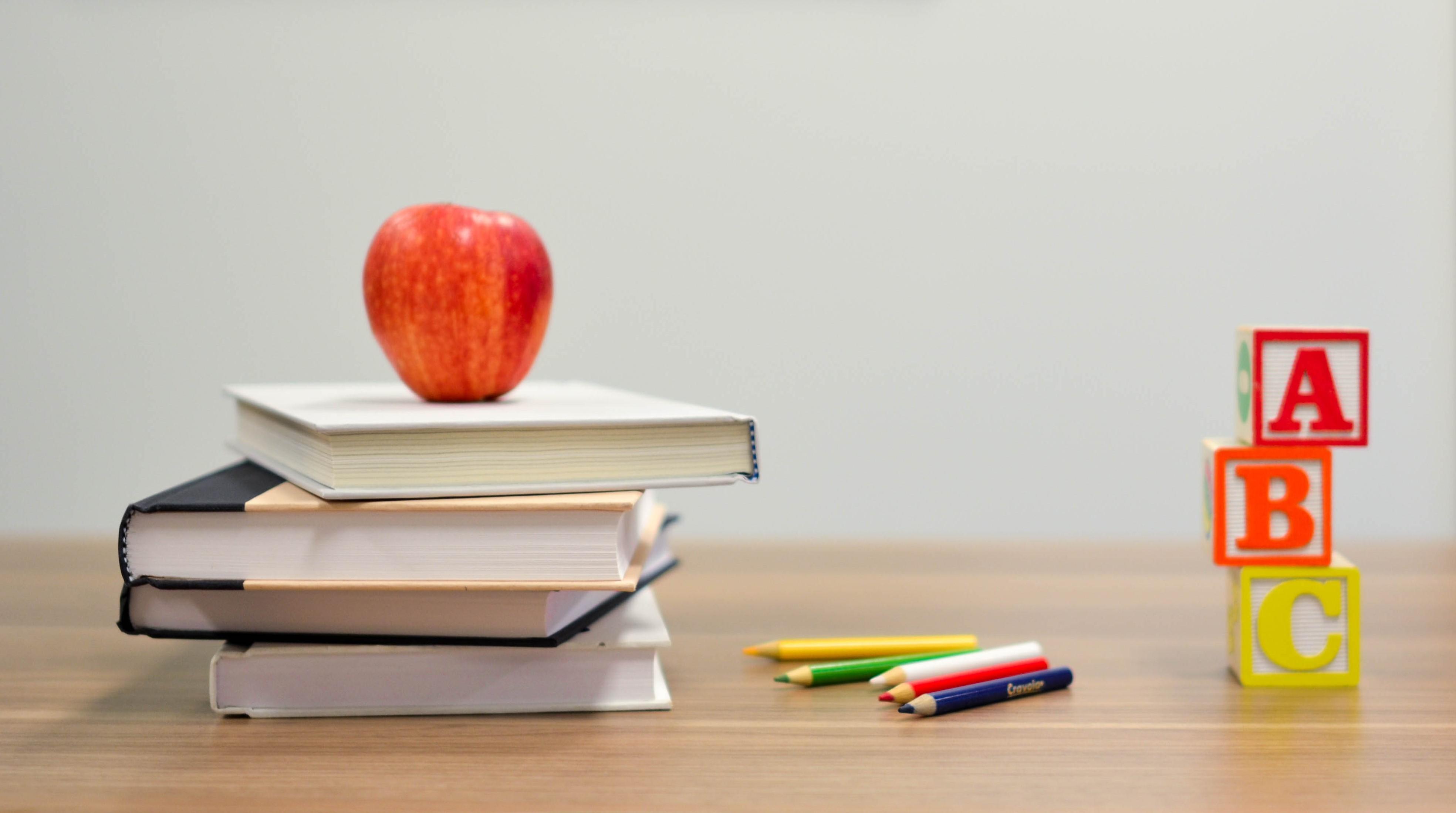 Pro's and Con's of a Bilingual School | Bilingual Kidspot