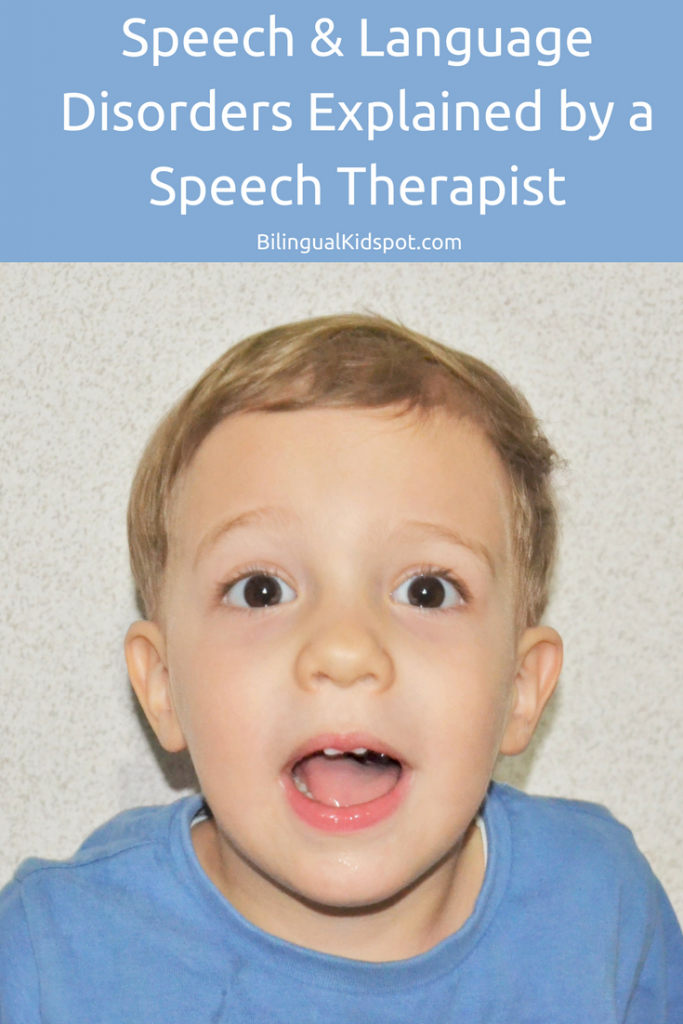 speech and language therapist how to become