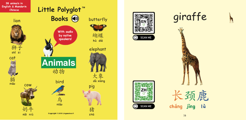 Bilingual Books with Audio - Chinese