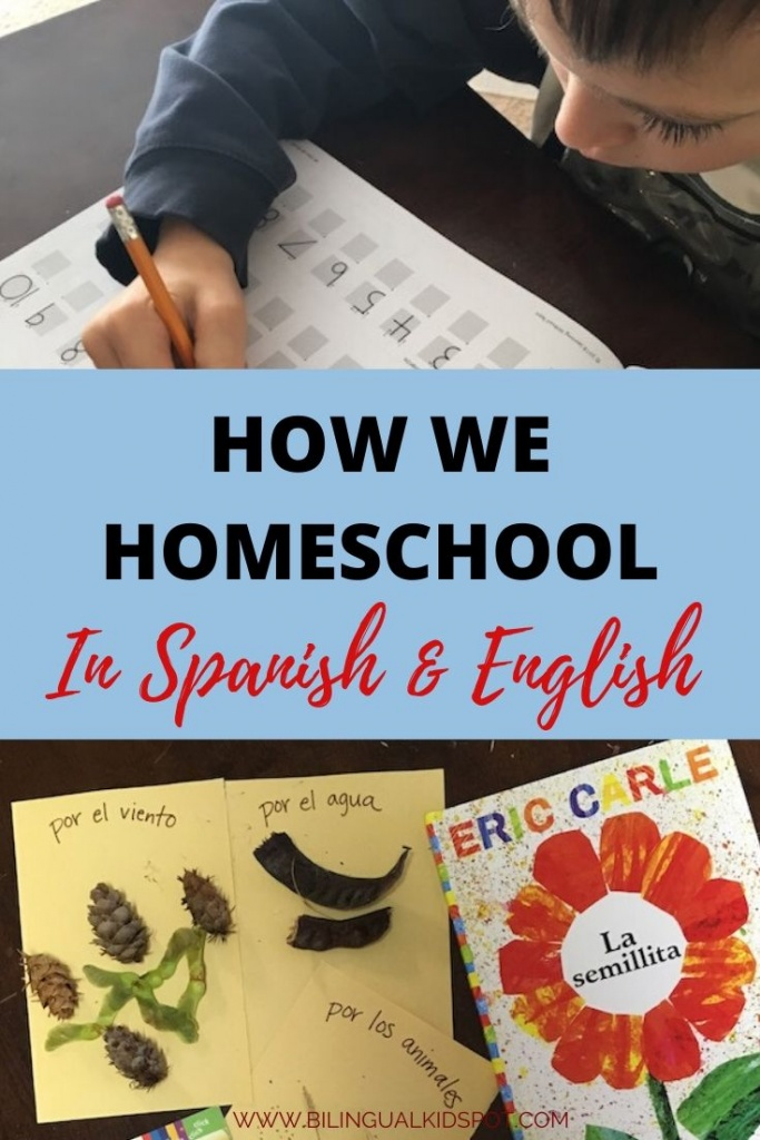 How We Homeschool in Spanish & English