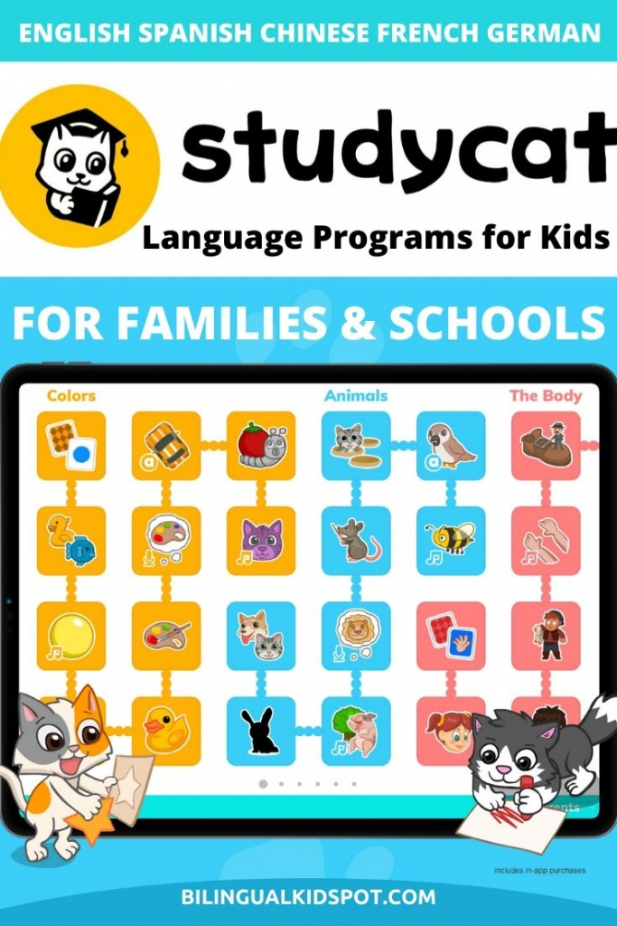 Studycat Review Language Learning App