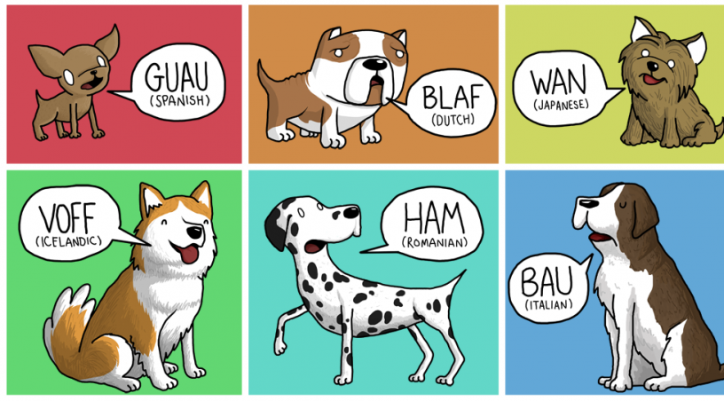 Animal sounds in different languages