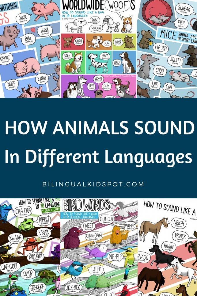 How Animals Sound in Different Languages