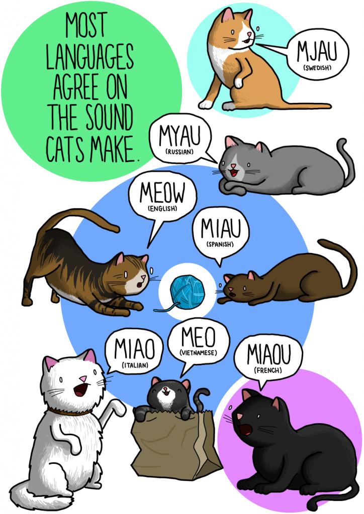 cat sounds different languages