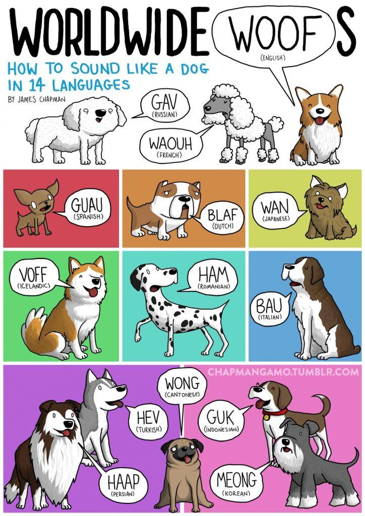 dog sounds different languages
