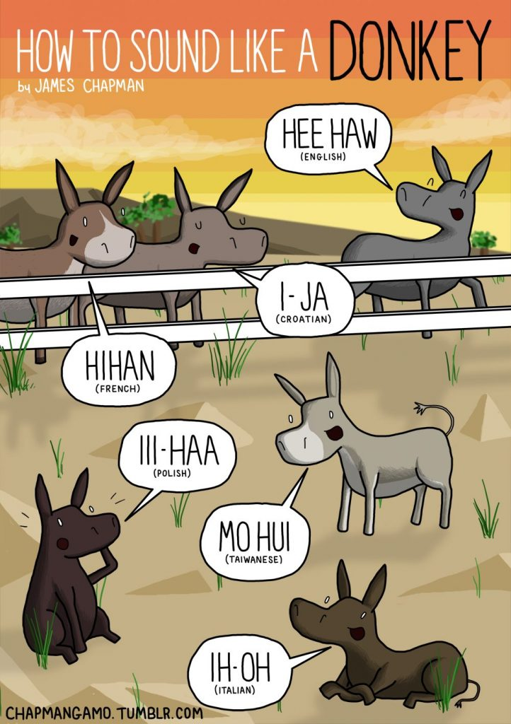 donkey sounds different languages