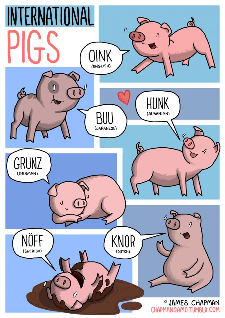 pigs sounds different languages