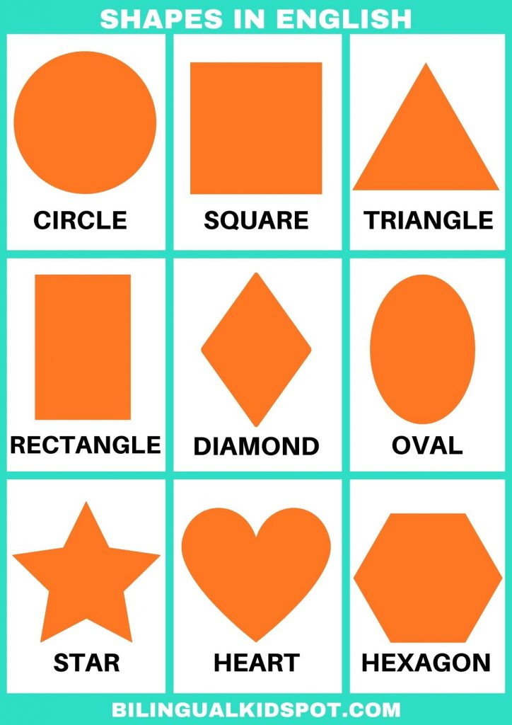 Shapes in English Printable